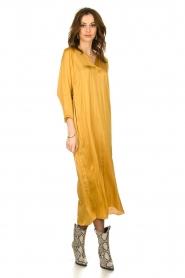 Rabens Saloner |  Wide maxi dress Bole | gold  | Picture 3