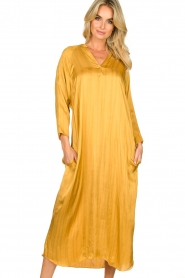 Rabens Saloner |  Wide maxi dress Bole | gold  | Picture 2
