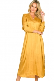Rabens Saloner |  Wide maxi dress Bole | gold  | Picture 4