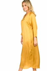 Rabens Saloner |  Wide maxi dress Bole | gold  | Picture 5