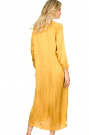 Rabens Saloner |  Wide maxi dress Bole | gold  | Picture 6