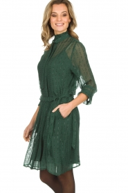 Munthe |  Dress with glitter stripes Net | green  | Picture 5