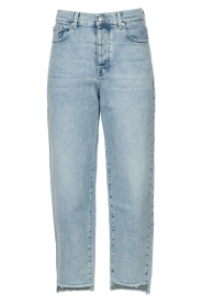 7 For All Mankind |  Mom fit jeans Dylan | light blue   | Picture 1