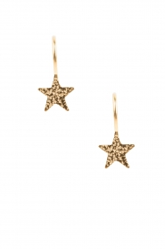 Betty Bogaers | 14k verguld gouden oorbellen Star hook | Goud