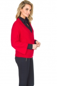 Essentiel Antwerp |  Warm sweater with V-neck Paling | red  | Picture 4
