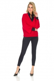Essentiel Antwerp |  Warm sweater with V-neck Paling | red  | Picture 3