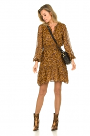 Dante 6 |  Dress with panther print Okala | brown  | Picture 3