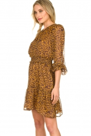 Dante 6 |  Dress with panther print Okala | brown  | Picture 5