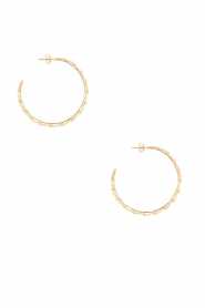 14k verguld gouden oorringen Feather Hoop | Goud