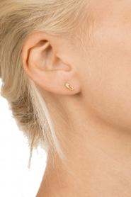 Betty Bogaers | 14k gouden oorbellen Seahorse | goud  | Afbeelding 3
