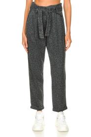 Kocca | Pants with print Zilon | grey  | Picture 4