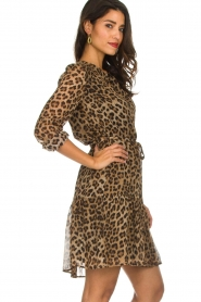 Set |  Leopard printed dress Nina | brown  | Picture 4