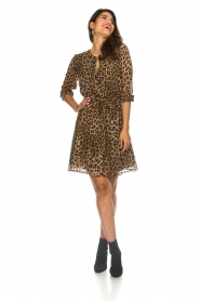 Set |  Leopard printed dress Nina | brown  | Picture 3