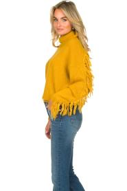 Kocca |  Turtleneck sweater Fisten | ochre yellow  | Picture 6