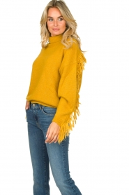 Kocca |  Turtleneck sweater Fisten | ochre yellow  | Picture 4