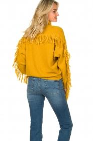 Kocca |  Turtleneck sweater Fisten | ochre yellow  | Picture 8