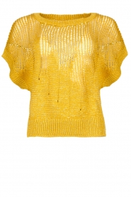 Rabens Saloner | Knitted sweater Almina | yellow  | Picture 1