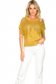 Rabens Saloner | Knitted sweater Almina | yellow  | Picture 2