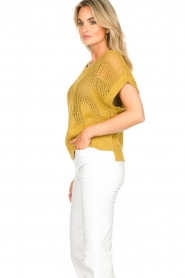 Rabens Saloner | Knitted sweater Almina | yellow  | Picture 6