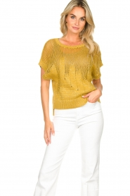 Rabens Saloner | Knitted sweater Almina | yellow  | Picture 5