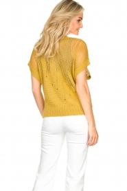 Rabens Saloner | Knitted sweater Almina | yellow  | Picture 7
