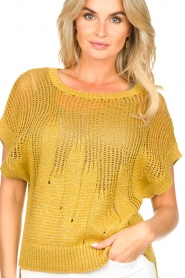 Rabens Saloner | Knitted sweater Almina | yellow  | Picture 8
