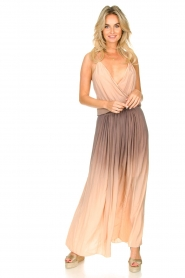 Rabens Saloner |  Maxi dress Inari | pink  | Picture 2