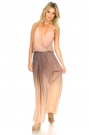 Rabens Saloner |  Maxi dress Inari | pink  | Picture 3