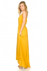 Lolly's Laundry :  Sleeveless maxi dress Beatrice | yellow - img5