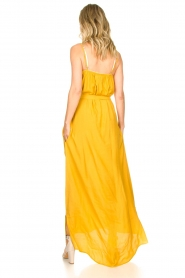 Lolly's Laundry :  Sleeveless maxi dress Beatrice | yellow - img6