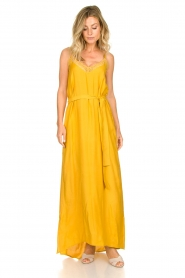 Lolly's Laundry :  Sleeveless maxi dress Beatrice | yellow - img3