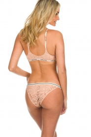 Love Stories |  Lace briefs Wild Rose | pink  | Picture 4
