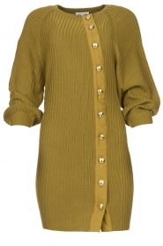Patrizia Pepe |  Knitted dress with button details Ivy | green  | Picture 1