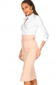 ELISABETTA FRANCHI |  Skirt Eloisa | old pink  | Picture 4