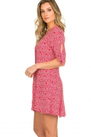 BEACHGOLD |  Dress Marie | red  | Picture 5