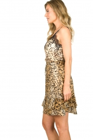 Set |  Sleeveless top with lace Aletta | animal print  | Picture 5