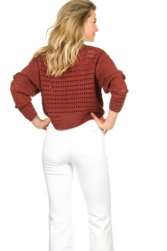Set |  Knitted sweater Allister | bordeaux  | Picture 6