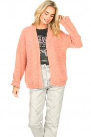 Knit-ted | Gebreid vest Bernelle | roze  | Afbeelding 2
