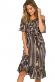 BEACHGOLD |  Dress Parimidi | brown  | Picture 2