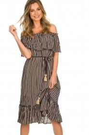BEACHGOLD |  Dress Parimidi | brown  | Picture 4