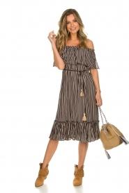 BEACHGOLD |  Dress Parimidi | brown  | Picture 3