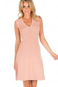 NIKKIE | V-hals jurk Ventura | roze  | Afbeelding 2