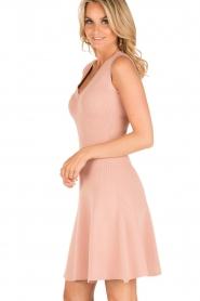NIKKIE | V-hals jurk Ventura | roze  | Afbeelding 4