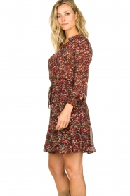 Set |  Floral skirt Ayesha | red  | Picture 5