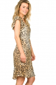 Set |  Animal print dress Anouk | brown  | Picture 5