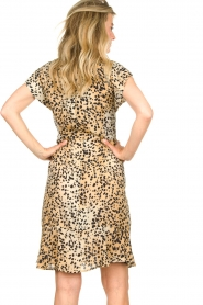 Set |  Animal print dress Anouk | brown  | Picture 6