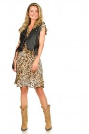 Set |  Animal print dress Anouk | brown  | Picture 3