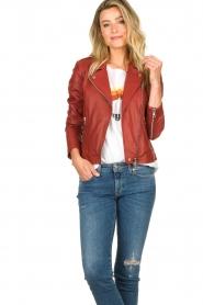 Set    Leather biker jacket Allister   bordeaux    Picture 5