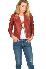 Set    Leather biker jacket Allister   bordeaux    Picture 4