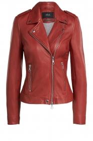 Set    Leather biker jacket Allister   bordeaux    Picture 1